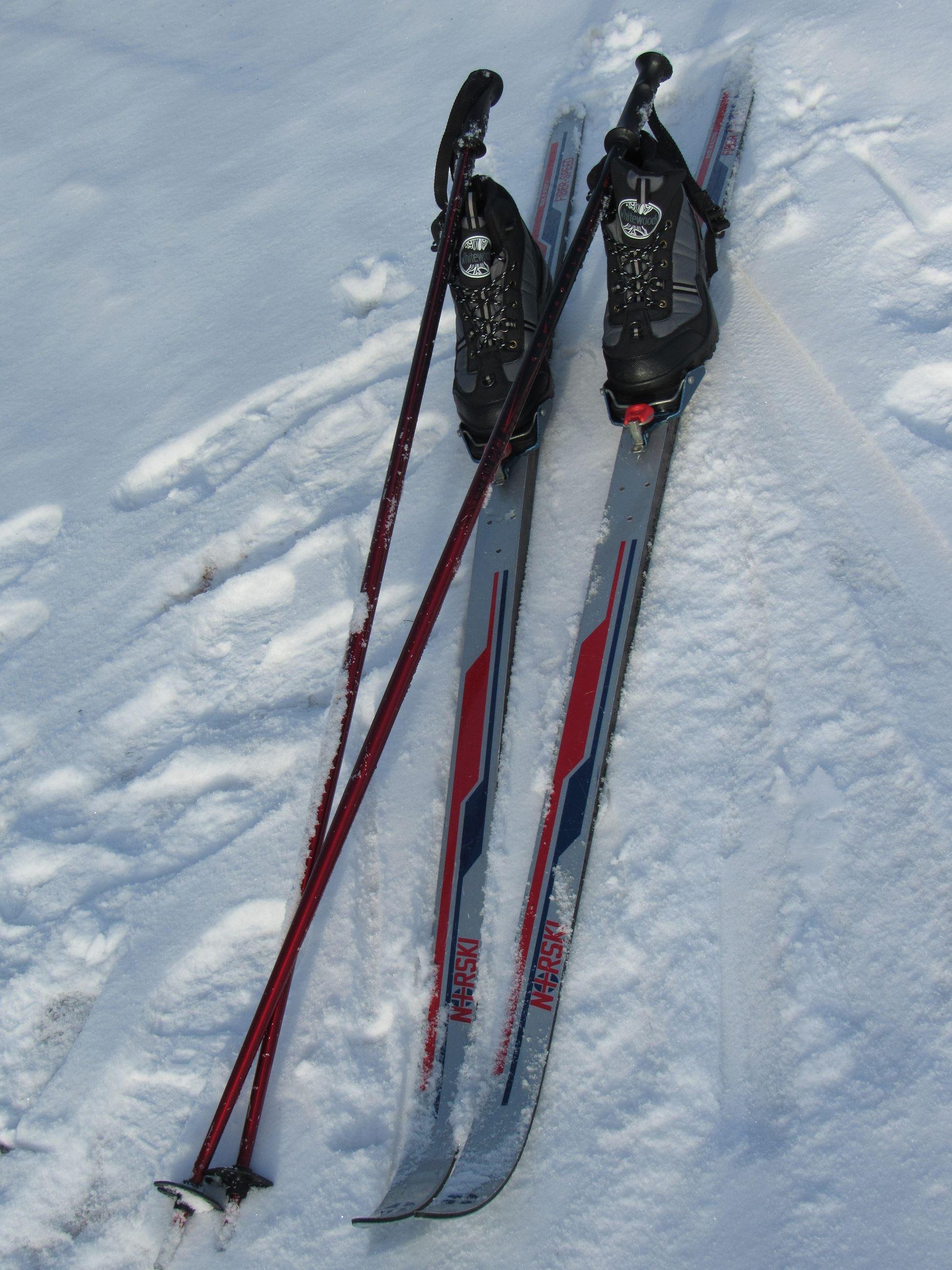A pair of cross country skis