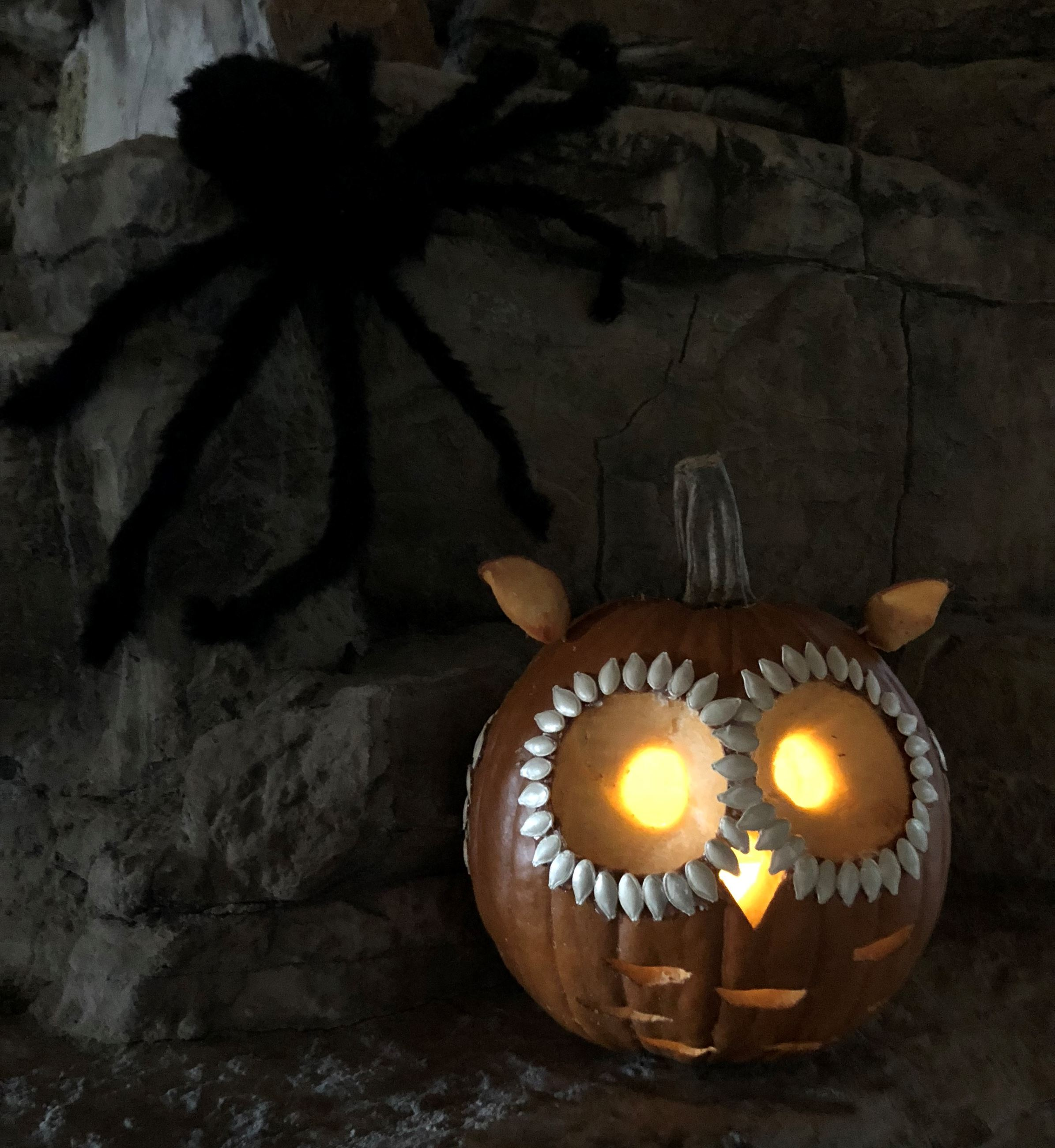 A carved Halloween pumpkin that is an owl face. There is a huge, black, hairy, spider above and to t